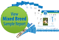 Wisdom Panel Mixed Breed Sample Report Thumb