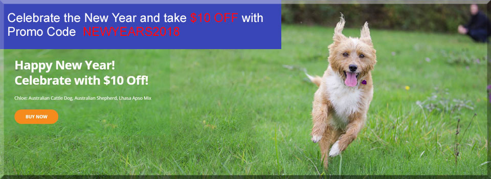 Wisdom Panel dog dna test coupon code