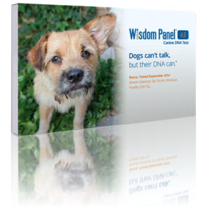 Wisdom Panel 4.0 packaging