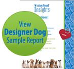 Wisdom Panel Mixed Breed Sample Report Thumb